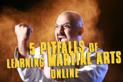 The Five Pitfalls of Learning Martial Arts Online