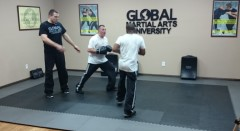 Black Belt at Home is now the Global Martial Arts University