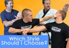 Which Martial Art Style Should I Learn?