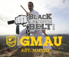 The Difference Between Black Belt at Home and Global Martial Arts University
