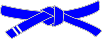 belt-blue-stripe