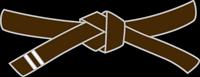 belt-brown-stripe