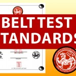 Complete Shotokan Karate Belt Test Standards and Feedback Loop