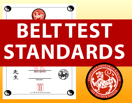 beltteststandards_blog