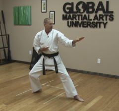 So You want to be a Black Belt?