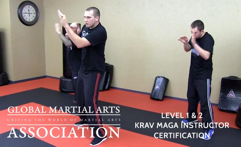 Krav Maga Instructor Certification Tennessee Student Seminar