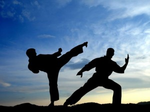 martial-arts-styles